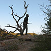 Walking Safari near Berg en Dal : We did an early morning walking safari out of Berg-en-Dal, this was an amazing experience.  After receiving strict safety instructions from our (armed) guides we were headed off into the African bush on foot.  This is an absolute don't miss.  We were able to observe Rhinos at less than 50 meters and elephants in the distance, as well as learning about the different plants and how to differentiate white rhino poop from black rhino poop.