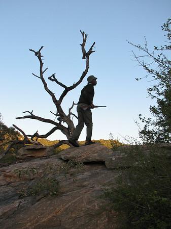 Walking Safari near Berg en Dal
